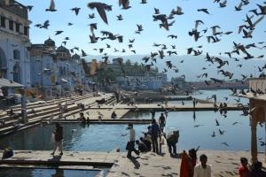 Lake Pushkar