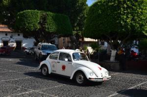 taxco beetle